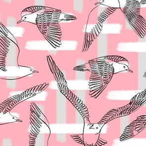 Seagulls (Pink Background)