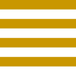 "notre dame stripe  - dome gold stripes, 1"" stripe, one inch stripe, dome gold stripe"