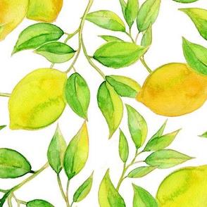 Lemon Haven pattern 1