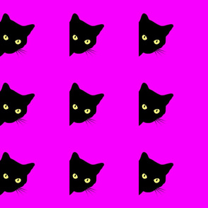 Peek-a-Boo Black Cats - magenta pink