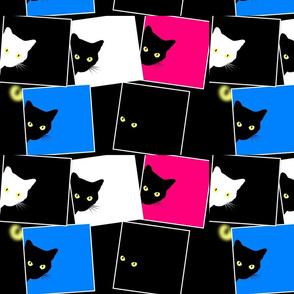 Peek-a-Boo Black Cats - multi - pink blue black white (large)
