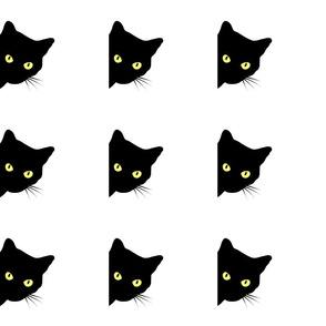 Peek-a-Boo Black Cats - white