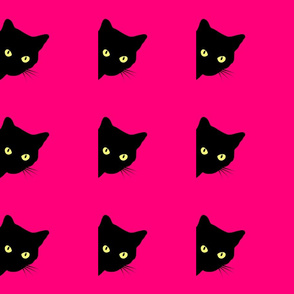 Peek-a-Boo Black Cats - hot pink