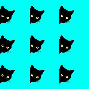 Peek-a-Boo Black Cats - turquoise blue