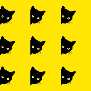 Peek-a-Boo Black Cats - yellow