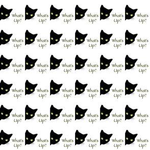 Peek-a-Boo Black Cats - white - What's Up? (medium)