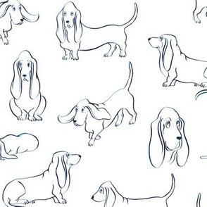 Basset Hounds (White Background)