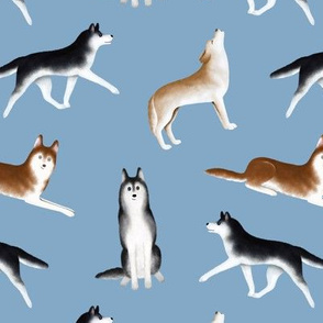 Siberian Husky Pattern (Light Blue Background)