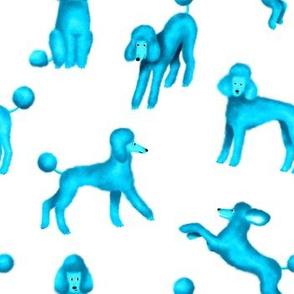 Blue Poodles