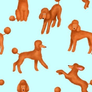 Red Poodles on Light Blue Background