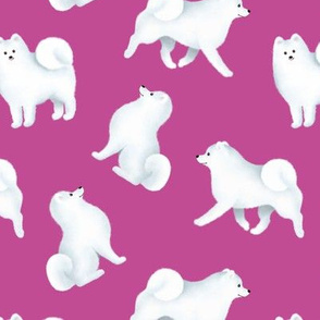 Samoyed Pattern (Berry Background)