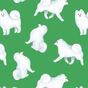 Samoyed Pattern (Green Background)