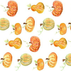 pumpkins and squash rotated