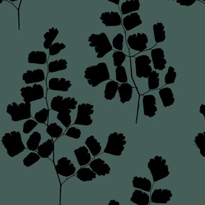 Maidenhair Ferns Black On Mystic