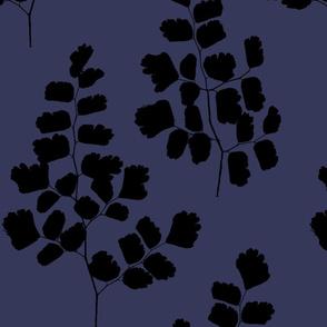 Maidenhair Ferns Black On Vintage