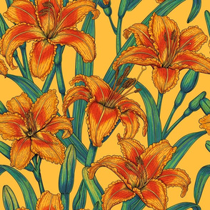 Tawny daylily flowers, blue and yellow