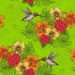 Hummingbirds and tropical bouquet, green bg