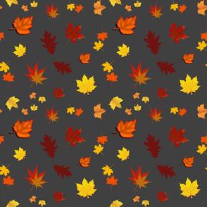 Falling Leaves of Autumn... charcoal grey, medium