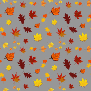 Falling Leaves of Autumn... grey, medium