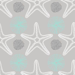 Sea Star Starfish & Sea Urchins