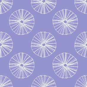 Sea Urchin on Purple