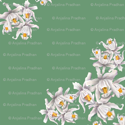 150-dpi-orchid-green-corner-2_preview