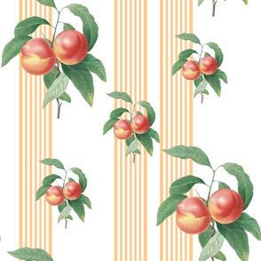Peachy Pinstripe