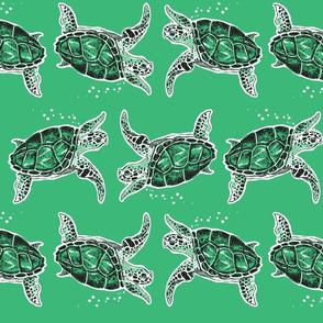 Sea Turtles - Reschasketch