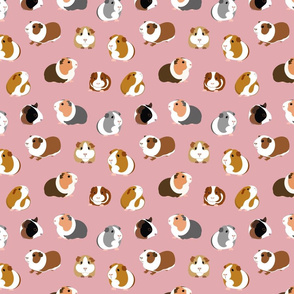 Guinea Pigs on Pink - medium scale