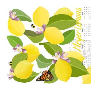 Meyer Lemons Tea Towel 2020 Calendar