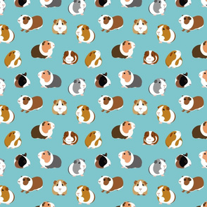 Guinea Pigs on Turquoise - medium scale