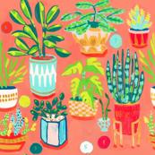 Retro Houseplants
