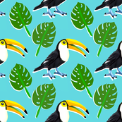 Tropical Toucans