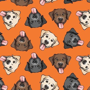 all the labs - cute happy labrador retriever dog breed - orange - LAD19