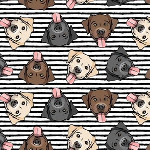 all the labs - cute happy labrador retriever dog breed - black stripes - LAD19