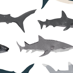 EXTRA LARGE - shark // sharks nautical boys white background kids ocean sea tiger shark hammerhead shark fabric