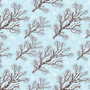 Winter, Snow M051