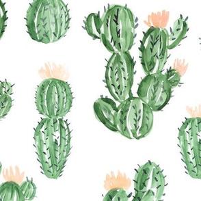 """12"""" Peach Cactus"""