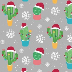 Christmas Cactus - Gray