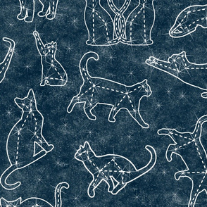 constellation cats midnight sky - large scale