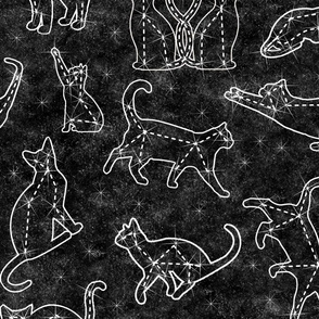 constellation cats  - large scale