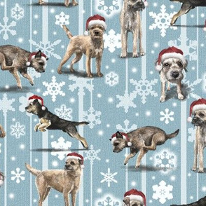The Christmas Border Terrier
