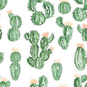 """8"""" Peach Cactus"""