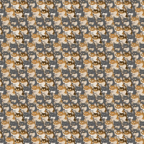 Small Red and Black Shiba Inu portrait pack