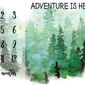 fall forest milestone blanket
