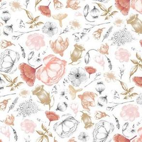 flowers  blush on white