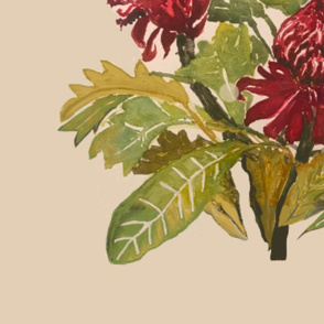 Watercolour Red Waratah -