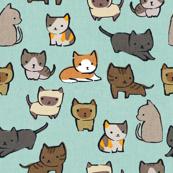 Cats {Sky}