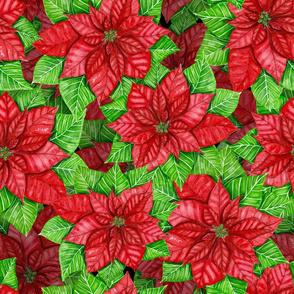 Poinsettia watercolor 3