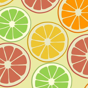 Tropical Fruit Citrus Fruit Slices Oranges, Lemons, Limes